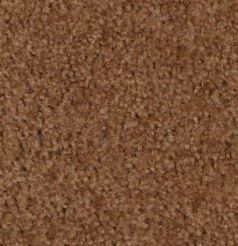 BROWN CARPET