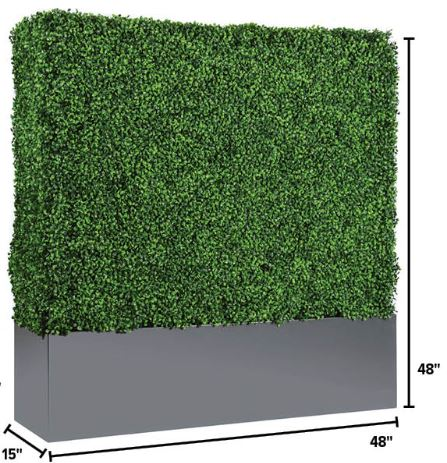 Short Hedge Wall