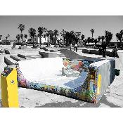mechanical skateboard rental