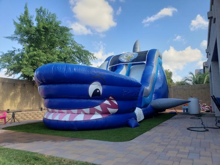 shark theme water slide
