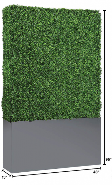 Hedge Wall - 8ft Tall x 4ft Wide
