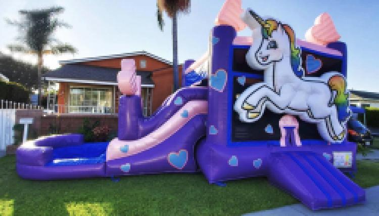 Unicorn Water Combo with Side Slide - Wet